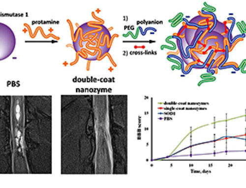 Nanoparticle-antioxidants to treat strokes and spinal cord injuries