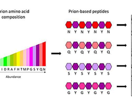 Minimalist biostructures designed to create nanomaterials