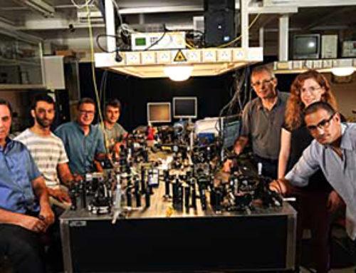 A new scientific field: Quantum metamaterials