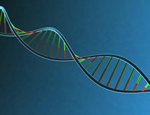 Gene Therapy Promotes Nerve Regeneration