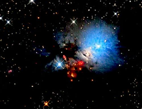 Chemistry in the turbulent interstellar medium